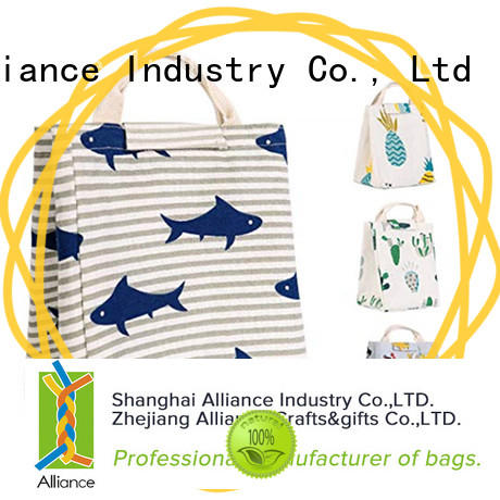 Alliance collapsible cooler factory for outdoor