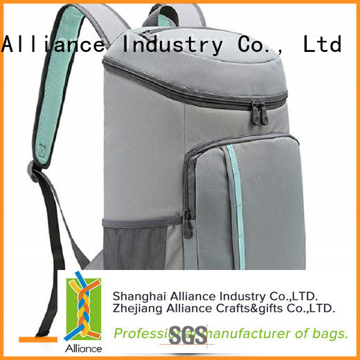 Alliance lunch box cooler bag with good price for picnics