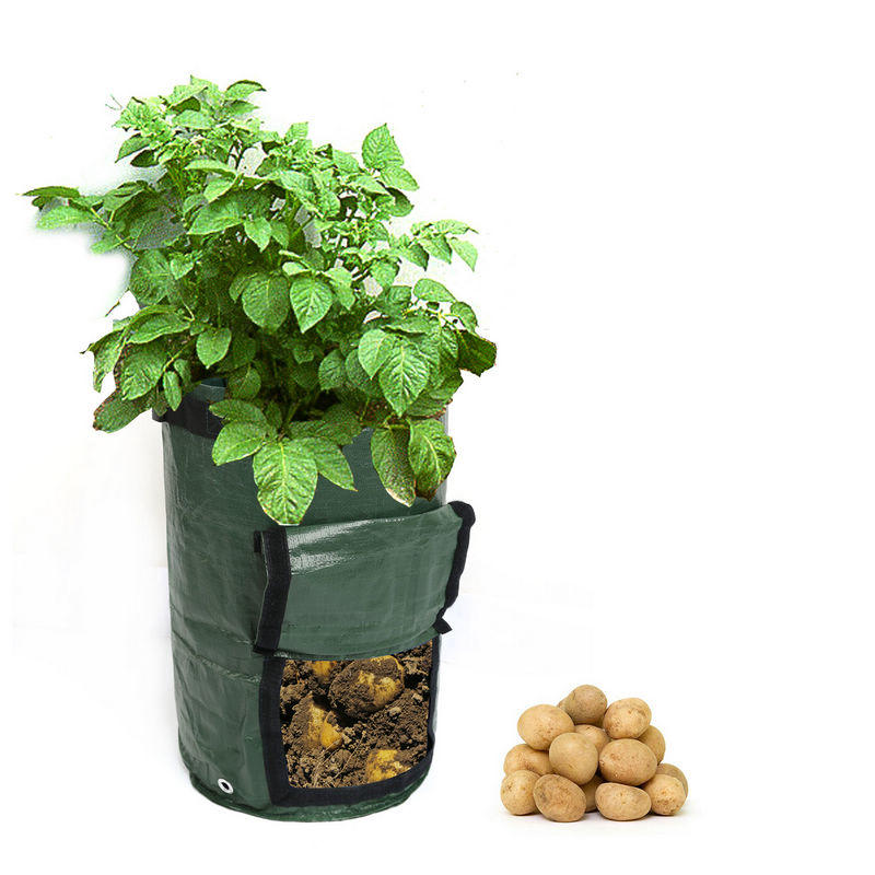 10 Gallon Garden Vegetables Planter Bags with Handles and Access Flap for Planting Potato Carrot Onion Taro Radish Peanut