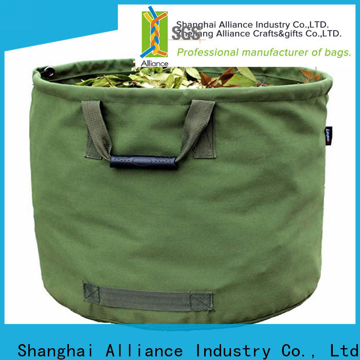 Alliance cost-effective garden bag factory for carrot