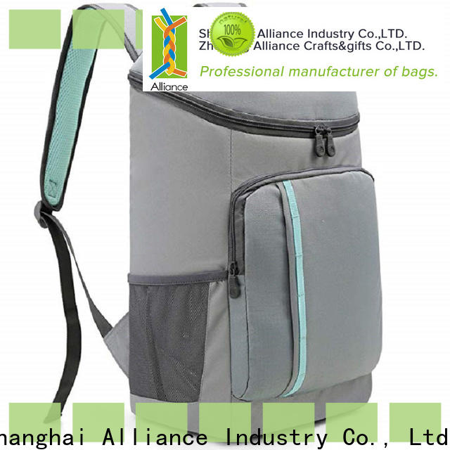 cost-effective lunch cooler bag factory for picnics
