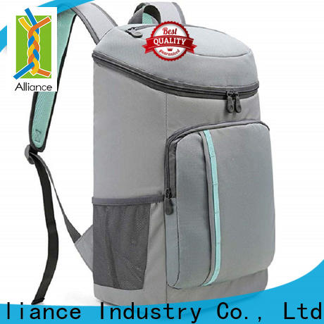Alliance cost-effective lunch cooler bag with good price for picnics